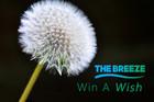 Win A Wish
