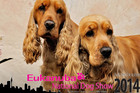 The Eukanuba National Dog Show