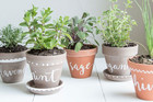 The Best DIY Garden Pots In The World