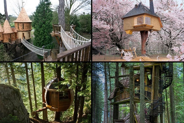 10 Best Treehouses In The World