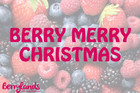 Berry Merry Christmas