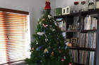 Listeners share their Christmas Trees with Robert Scott