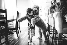 Why you shouldn't be hugging your dog