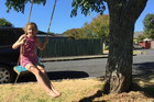 Auckland Council orders kids roadside swings to be removed